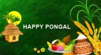 pongal offers