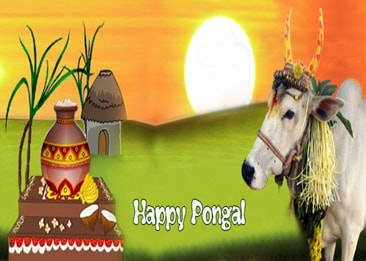 Shopclues Pongal Special Offers